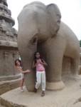 Elephant girls
